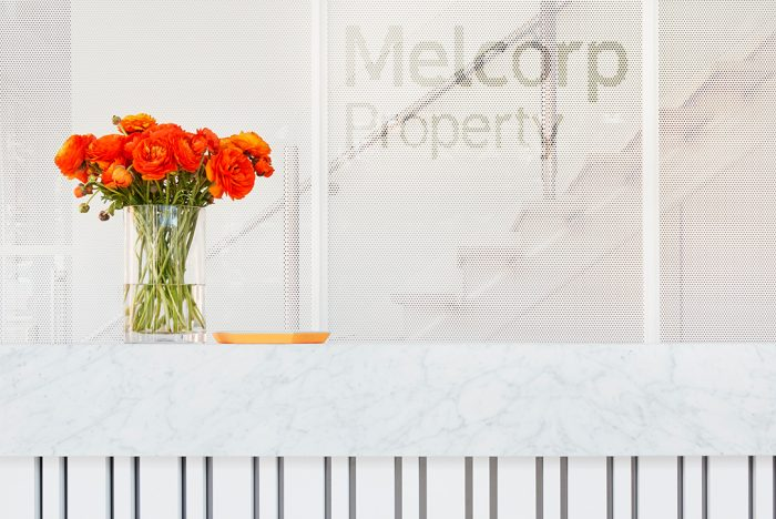MelCorp Property